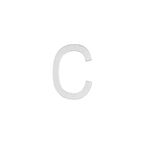 Afbeelding van Intersteel Huisletter C 100 mm roestvaststaal geborsteld